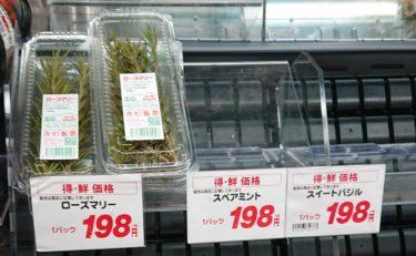 今日のクソ株日記と日経平均株価大暴落で爆損ワロタ。